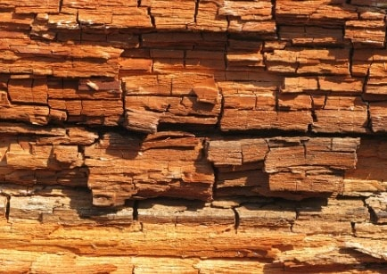 Brown Rot in Timber