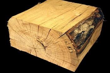 Wane in Timber