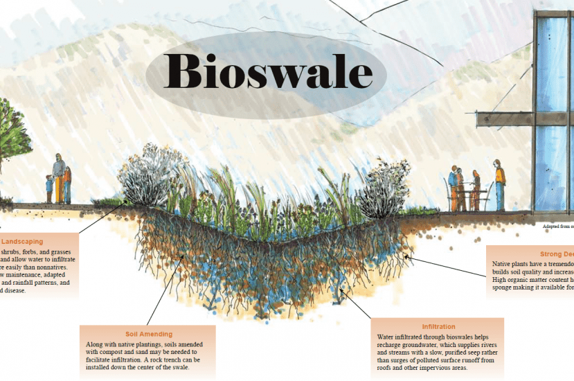 Bioswale – Design, Applications and Advantages