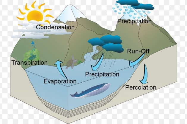 Engineering Hydrology – Features and Applications
