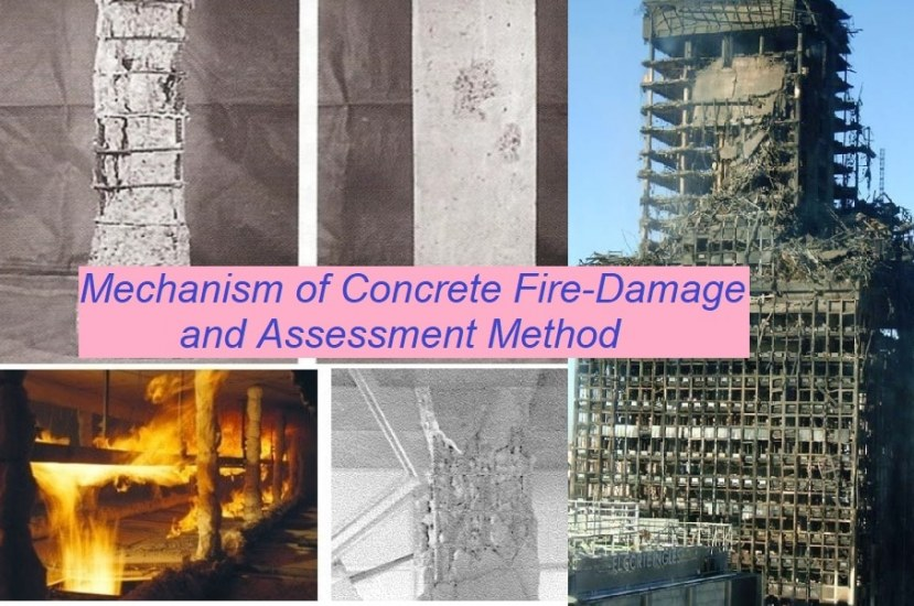 Fire Damage Mechanism of RC Structure and Assessment Method