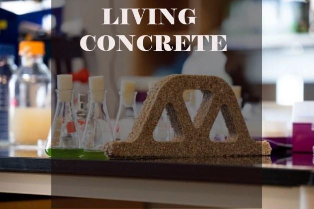 Living Concrete: Advantages and Problems