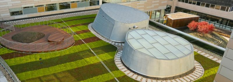 Green Roofs at Penn State Hospital Building