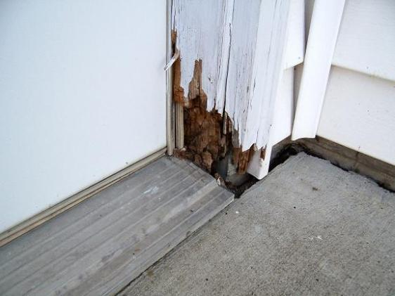 Moisture penetration into doors.