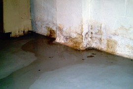 How to Deal With a Wet Basement?