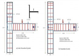 What is the Beam and Column Junction reinforcement details?