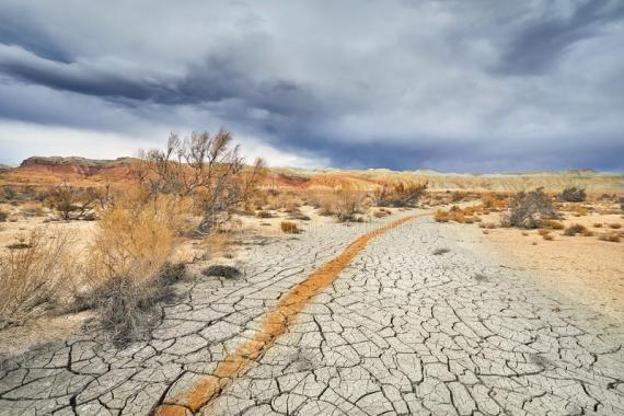 Main soil problems