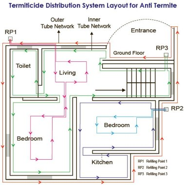 Termite-tubing-network-layout