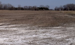Sodic Soil: Effects, Properties, and Treatment