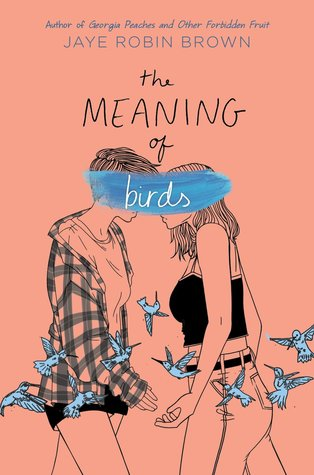 The Meaning of Birds by Jaye Robin Brown - The Contented Reader