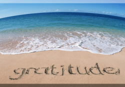 Show your friends gratitude every day