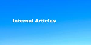 Internal articles