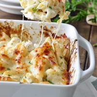Chicken Alfredo Pasta Bake
