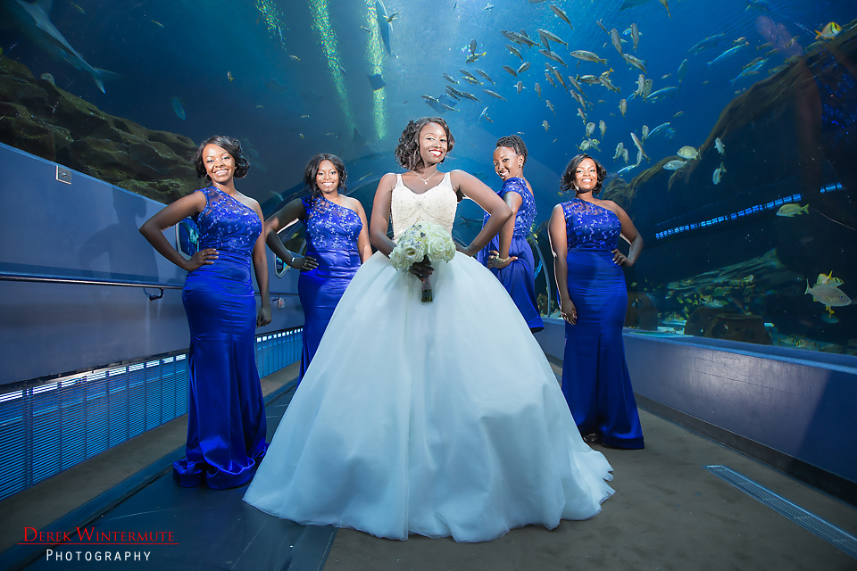 A Romantic Georgia Aquarium Wedding The Coordinated Bride
