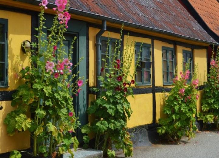 Magasasa Dim Sum & Cocktails in Copenhagen - The Copenhagen Tales