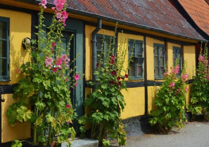Breakfast at Feel Good - foodie travel guide to Groningen | The Copenhagen Tales