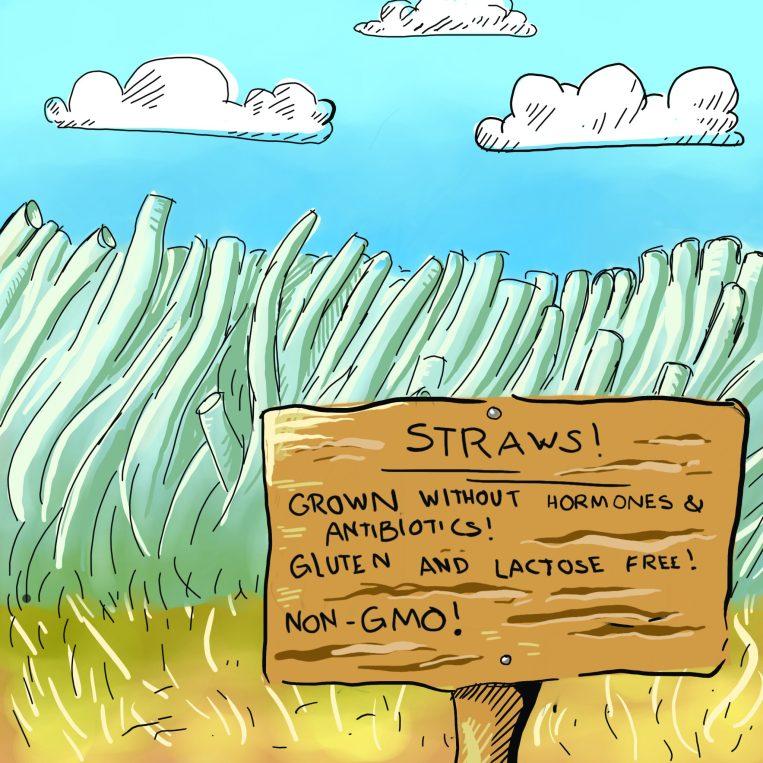 EdCartoon_NonGMOStraws