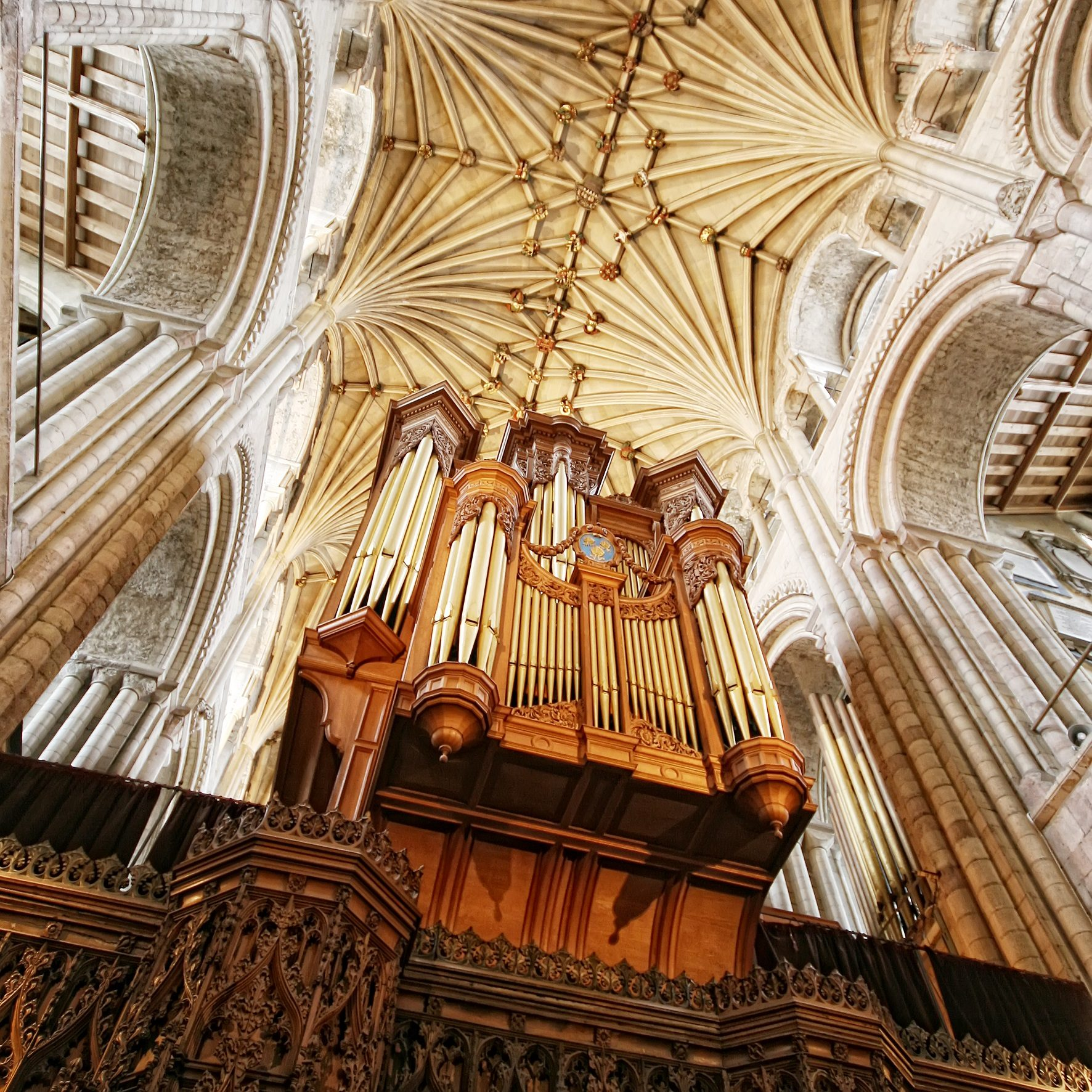Norwich Cathedral Organ © Paul Hurst (2).jpg
