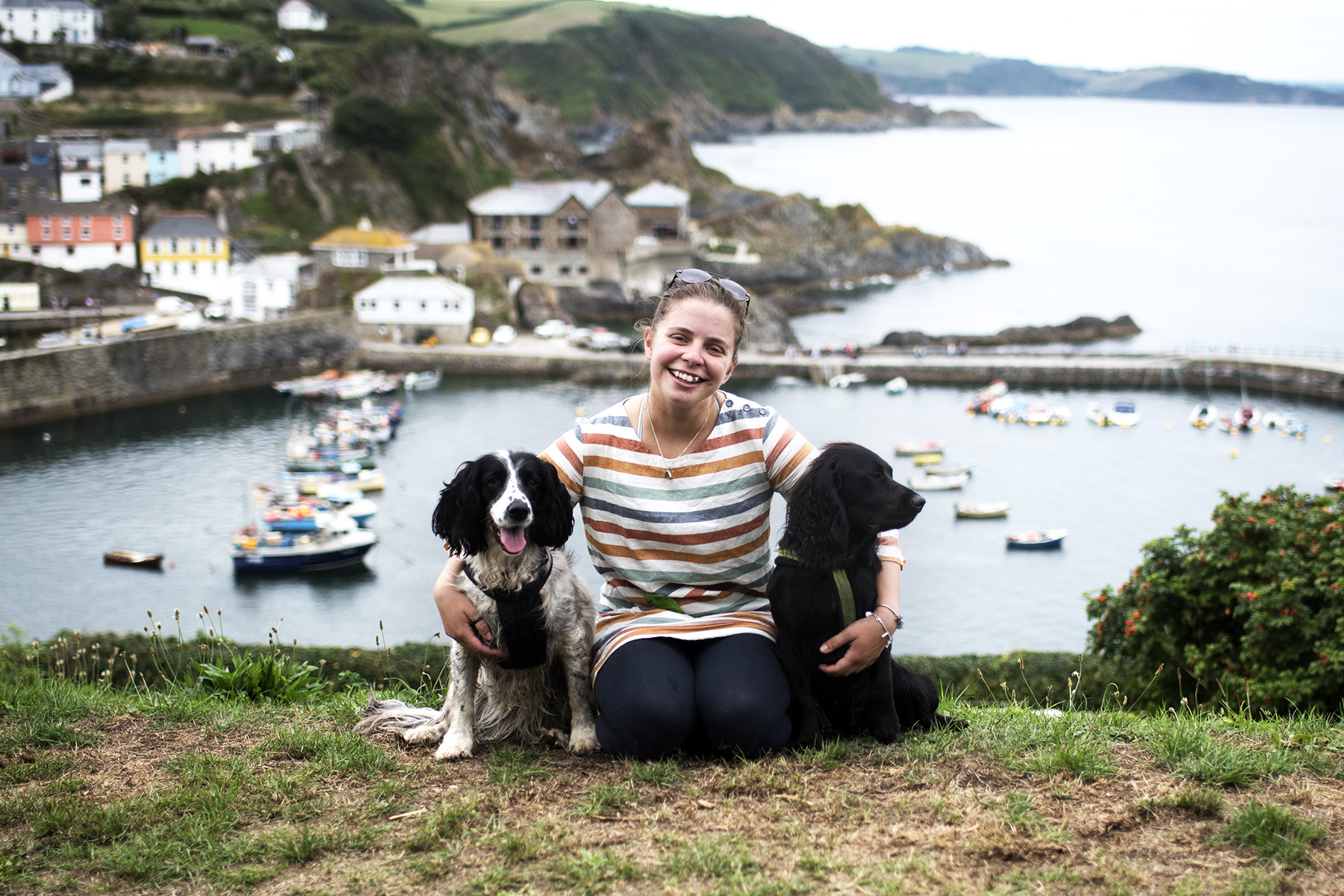 Hattie | The Cornish Dog