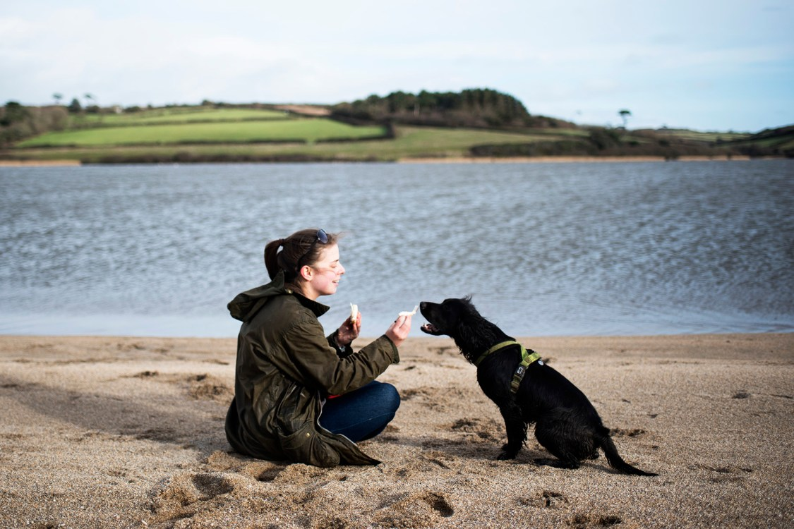 Penrose to Loe Bar Dog Friendly Beaches in Cornwall | The Cornish Dog