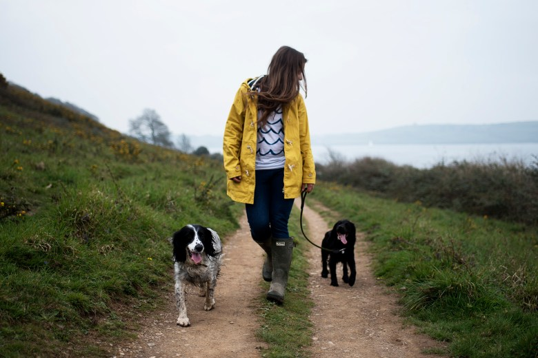 A Capsule Wardrobe for Dog Owners   The Cornish Dog