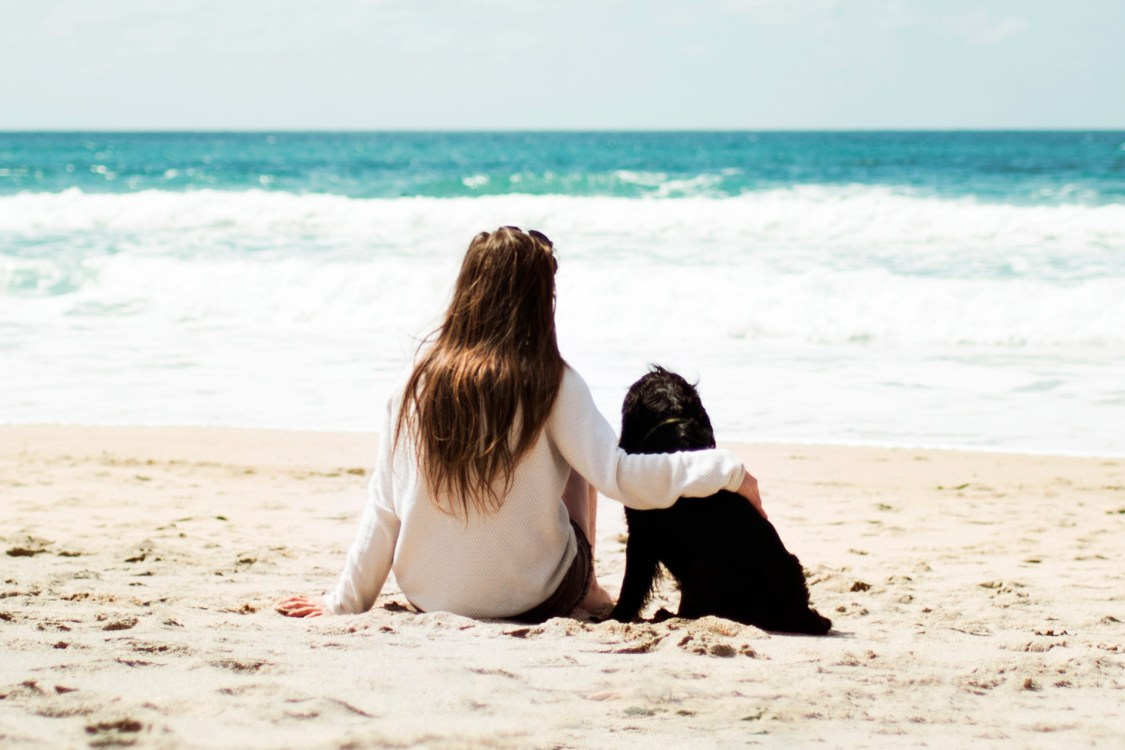 About   The Cornish Dog