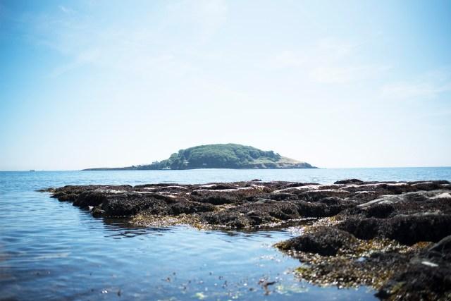 Hannafore Beach | The Cornish Dog