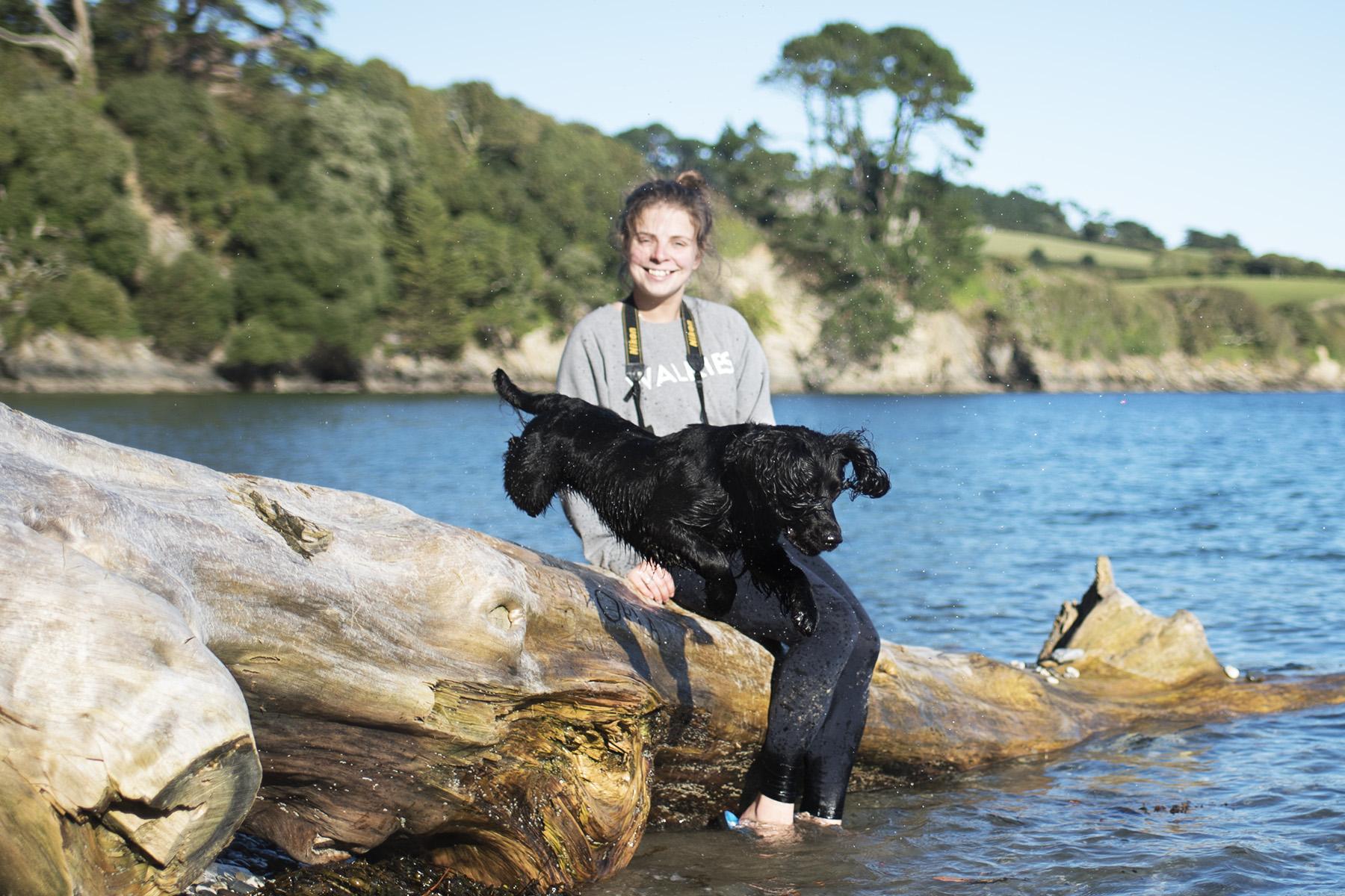 The Paw Post | The Cornish Dog