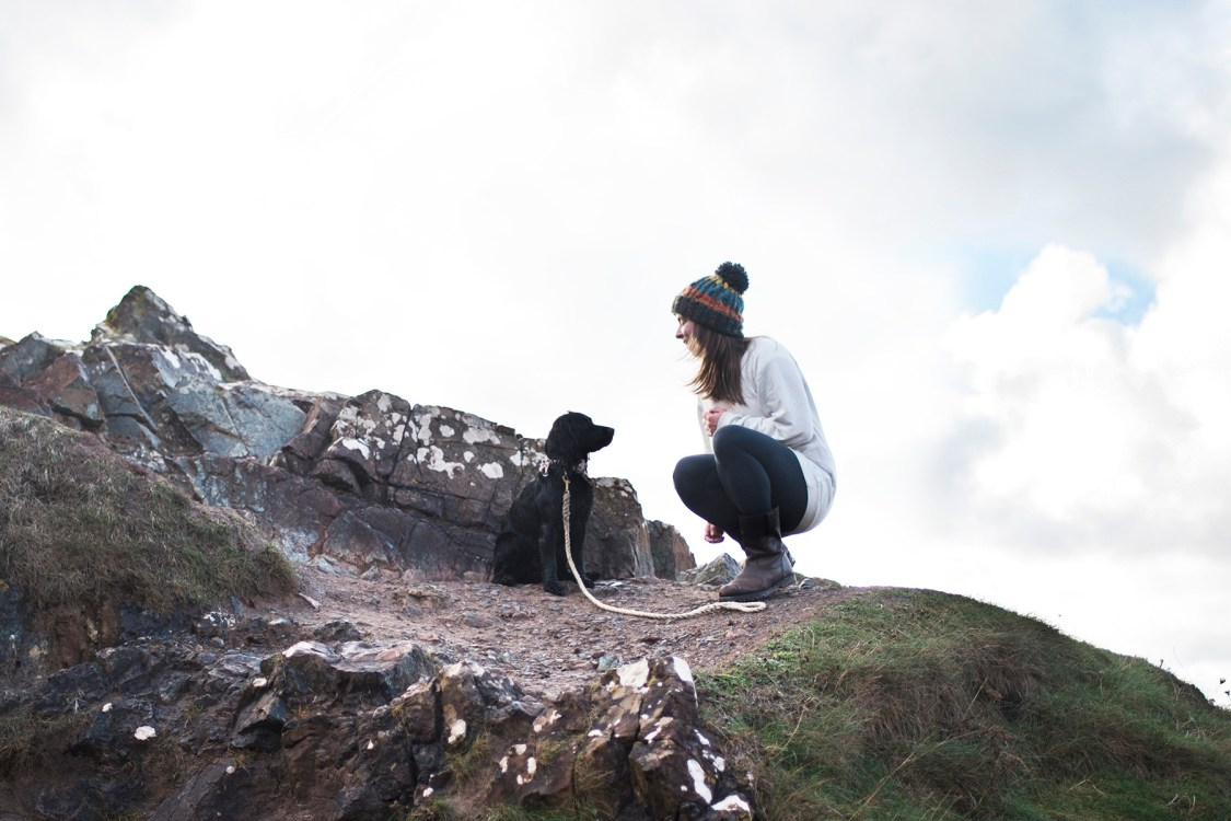Should Dog Bloggers Work for Free? | The Cornish Dog