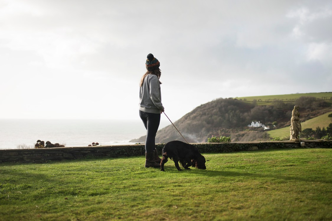 Talland Bay Hotel | The Cornish Dog