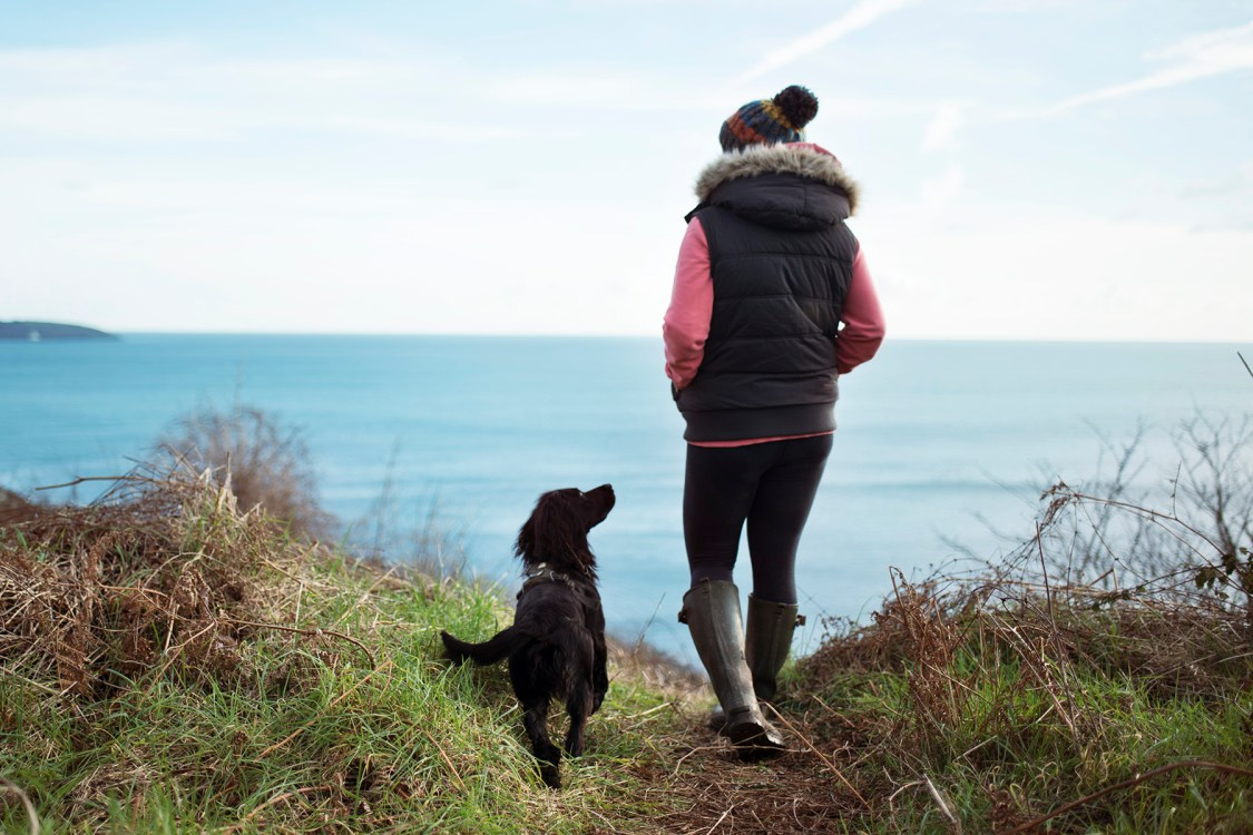 Day in the Life | The Cornish Dog