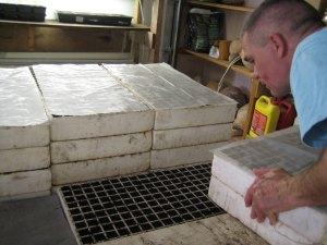John stacking seed trays