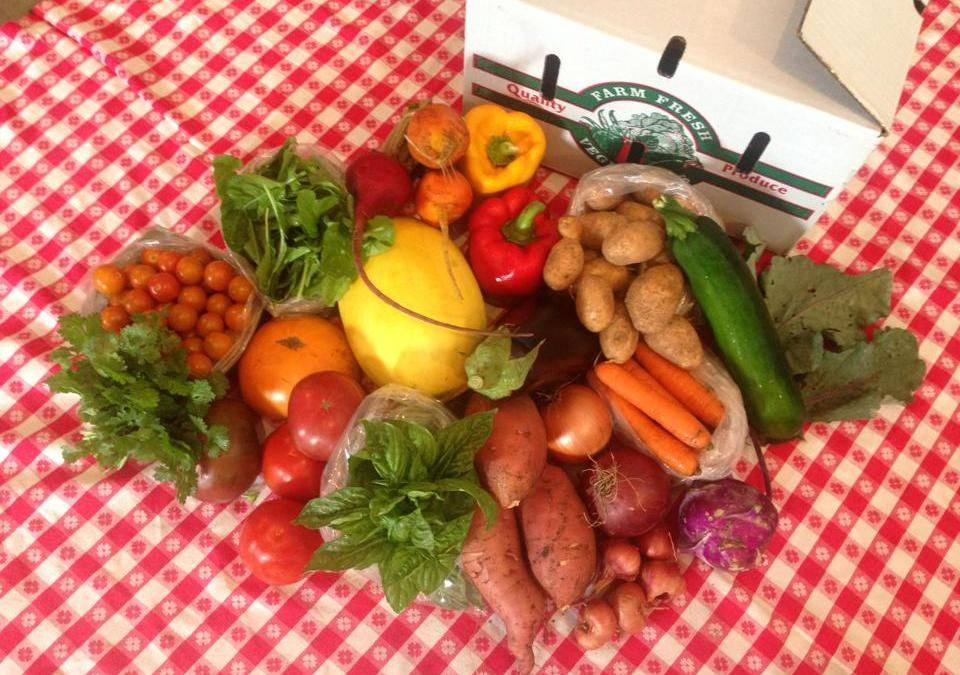 The Cornucopia CSA: Would you like to sign up for a share?