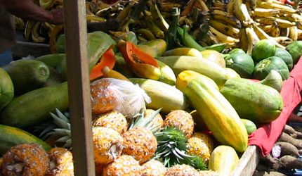 costa rica fruits and vegetables