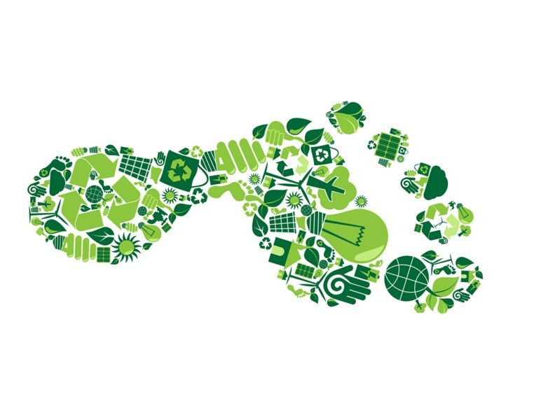 ecological footprint Abstract the sustainability of our planet's resources ultimately depends upon our actions as citizens how much we drive, what we eat, whether we have pets, and whether we recycle are all individual actions that affect the sustainability of the earth's resources.