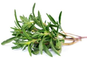 Common Plant Remedies Your Grandmother May Have Used | The Costa