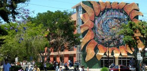 UCR Costa Rica University Tropical American Opportunities