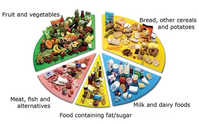 It is necessary to consume different groups of food to have a healthy condition.