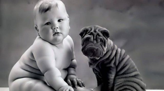 Very often, owners and their dogs look alike.
