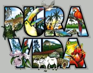"""""""Pura Vida"""" represents the Costa Rican way of life."""