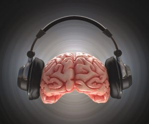 Music is one of the multiple intelligence areas.