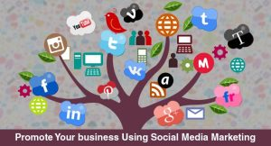 Promote-Your-Business-Using-Social-Media-Marketing
