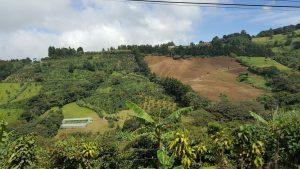 Zarcero hills offer a beautiful landscape of crop fields.