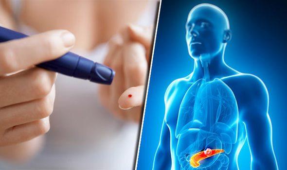 Diabetic pancreas