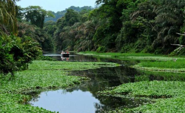 Tortuguero National Park navigable channels