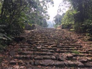 Guayabo Stairs