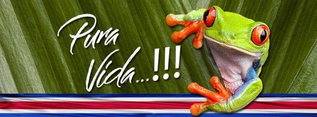 Banner Pura Vida