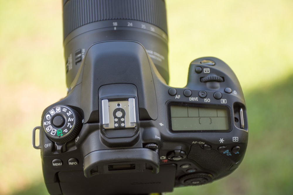 canon 80d review pic