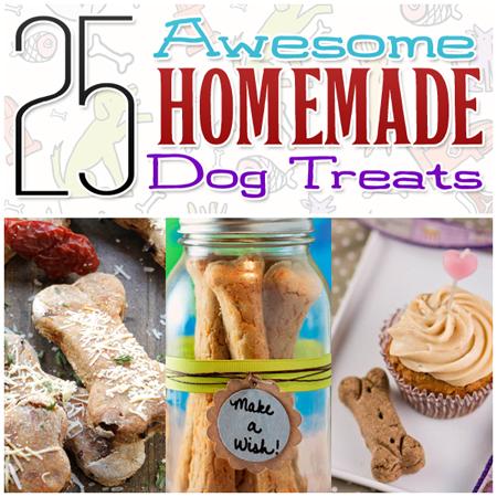 25 Awesome Homemade Dog Treats