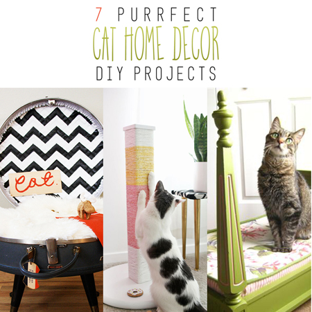 7 Purrfect Cat Home Decor DIY Projects